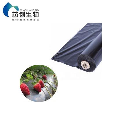 PLA Mulch Film Eco Friendly Plant Ground Cover Transparent